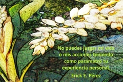 vida-prsonal-1-e1528688302749